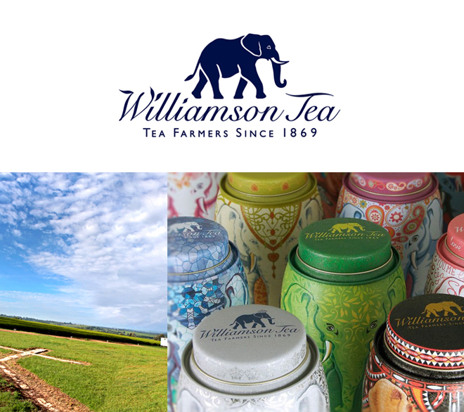 Williamsontea